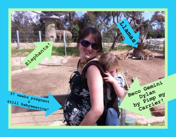 Zoo Babywearing
