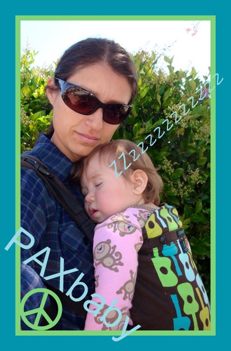 PAXbaby Babywearing Beco Butterfly Dylan custom