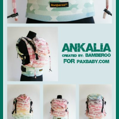 PAXbaby_ankalia_Bamberoo_wcfb_wrap_conversion_full_buckle_wrap_ssc__08741